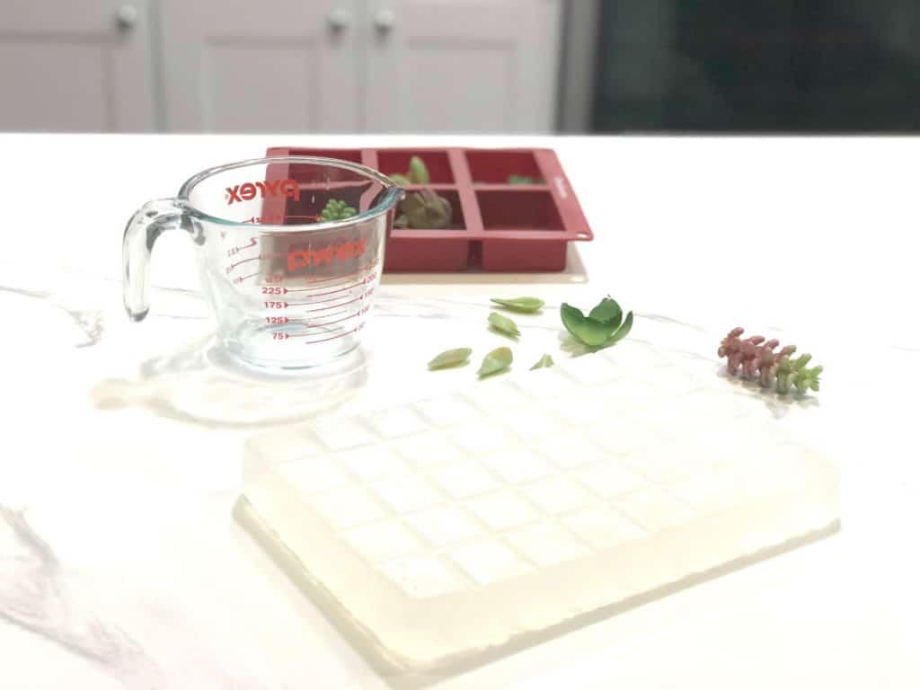 DIY Succulent Soap Soap Molds